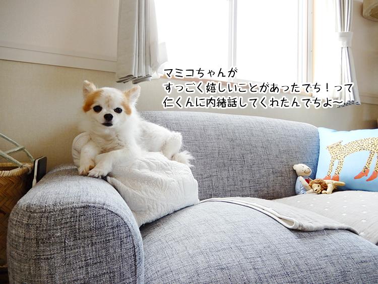 マミコちゃんがすっごく嬉しいことがあったでち!って仁くんに内緒話してくれたんでちよ~
