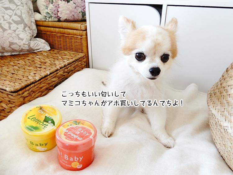 こっちもいい匂いしてマミコちゃんがアホ買いしてるんでちよ!