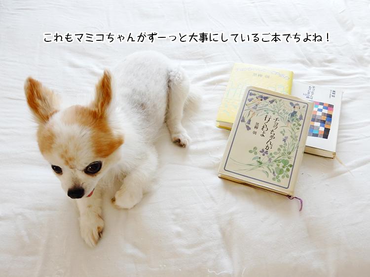 これもマミコちゃんがずーっと大事にしているご本でちよね!