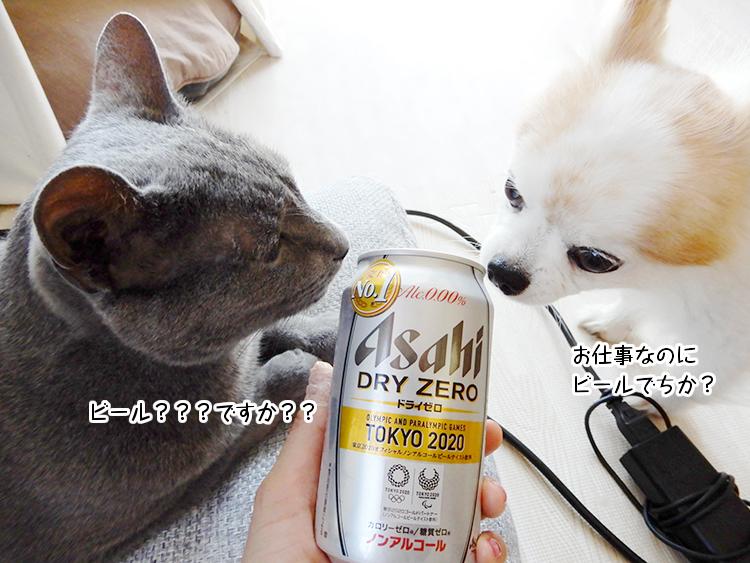 ビール??ですか??お仕事なのにビールでちか?