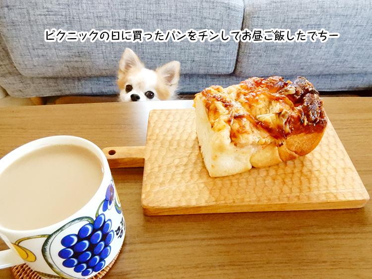 ピクニックの日に買ったパンをチンしてお昼ご飯したでちー