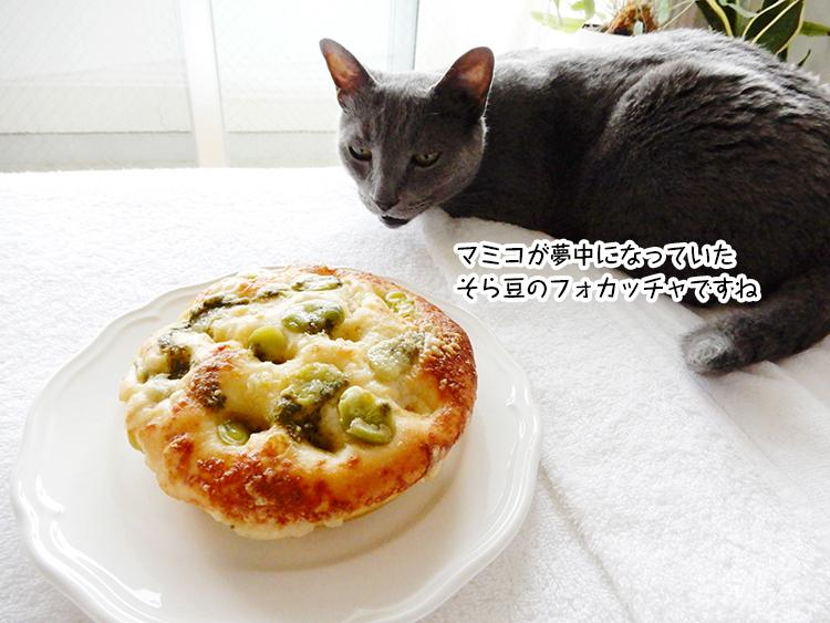 マミコが夢中になっていたそら豆のフォカッチャですね