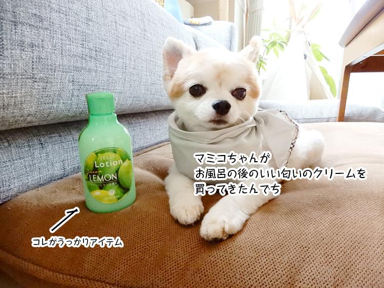 マミコちゃんがお風呂の後のいい匂いのクリームを買ってきたんでち
