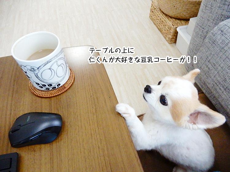 テーブルの上に仁くんが大好きな豆乳コーヒーが!!