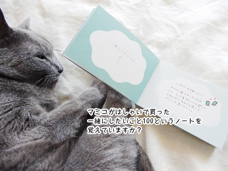マミコがはしゃいで買った一緒にしたいこと100というノートを覚えていますか?