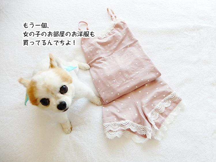 もう一個、女の子のお部屋のお洋服も買ってるんでちよ!