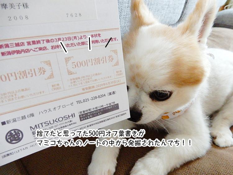 捨てたと思ってた500円オフ葉書きがマミコちゃんのノートの中から発掘されたんでち!!