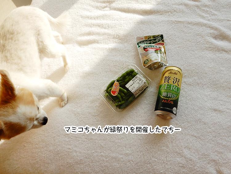 マミコちゃんが緑祭りを開催したでちー