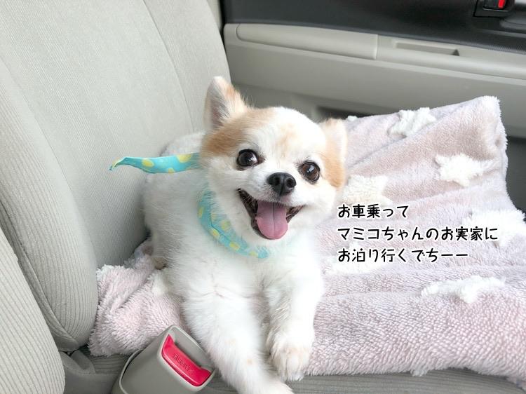 お車乗ってマミコちゃんのお実家にお泊り行くでちーー