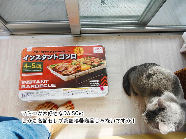 マミコが大好きなDAISOの しかも高額セレブ系価格帯商品じゃないですか!