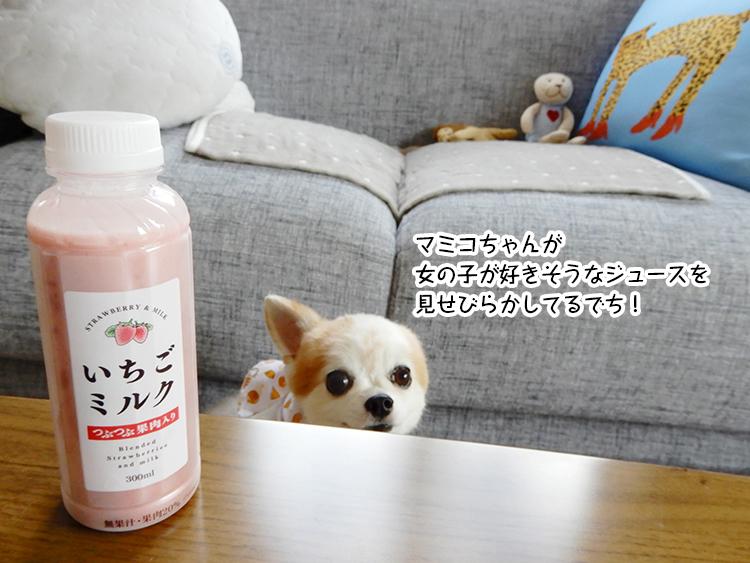 マミコちゃんが 女の子が好きそうなジュースを 見せびらかしてるでち!