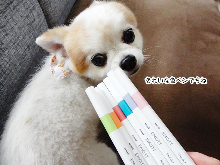 きれいな色ペンでちね
