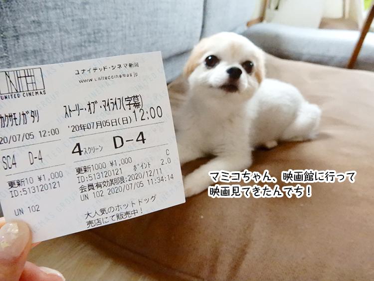 マミコちゃん、映画館に行って映画見てきたんでち