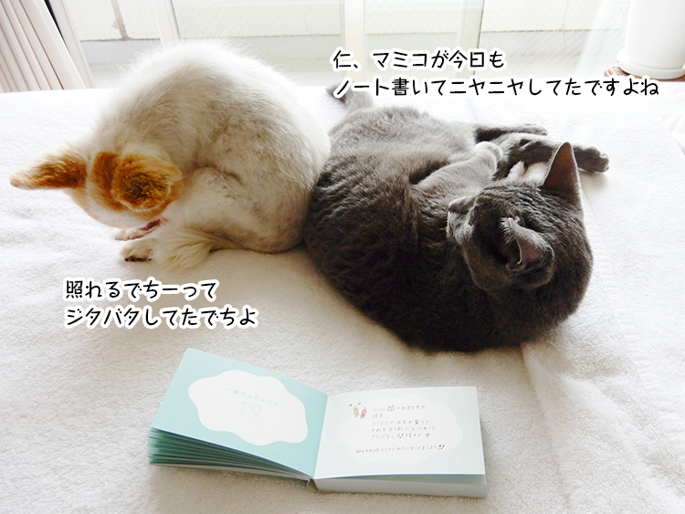 仁、マミコが今日も ノート書いてニヤニヤしてたですよね