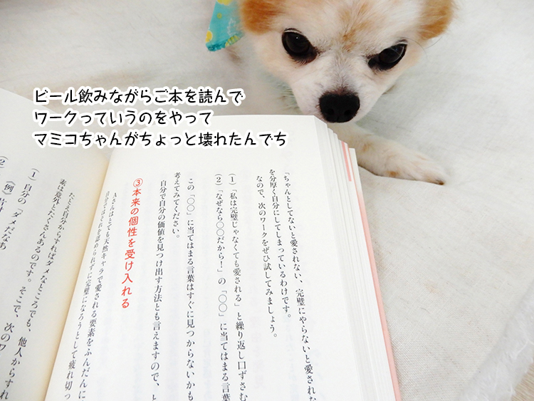 ビール飲みながらご本を読んで ワークっていうのをやって マミコちゃんがちょっと壊れたんでち