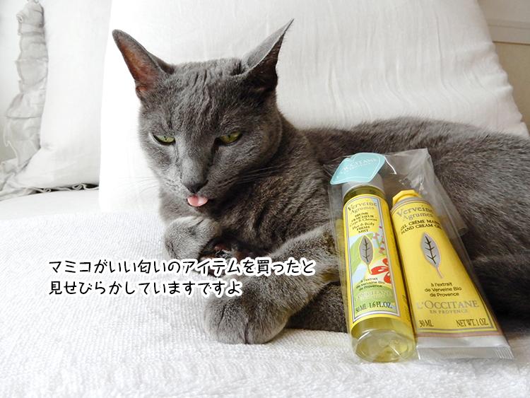マミコがいい匂いのアイテムを買ったと 見せびらかしていますですよ
