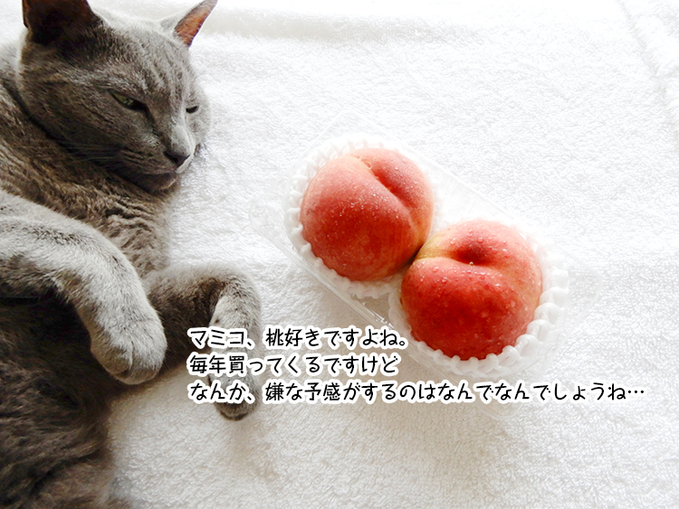 マミコ、桃好きですよね。毎年買ってくるですけど なんか、嫌な予感がするのはなんでなんでしょうね…