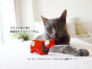 マミコが夏の夜に 保健室をやるそうですよ。