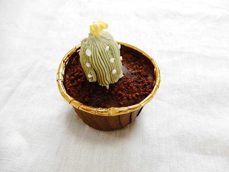チョコの土に生えるサボテン