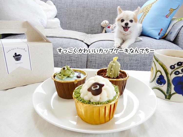 すっごくかわいいカップケーキなんでちー