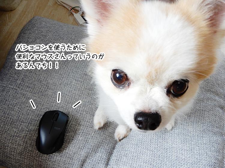 パショコンを使うために 便利なマウスさんっていうのが あるんでち!!