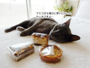 マミコが土曜日に買いに行った ケーキですよ…