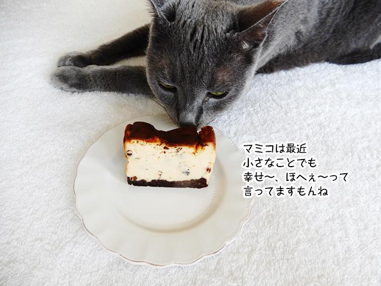 マミコは最近 小さなことでも 幸せ~、ほへぇ~って 言ってますもんね