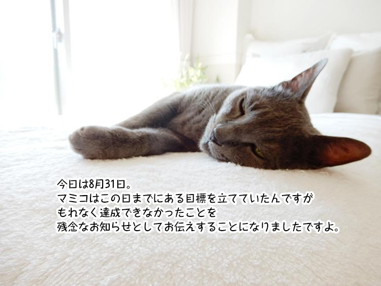 今日は8月31日。マミコはこの日までにある目標を立てていたんですが もれなく達成できなかったことを 残念なお知らせとしてお伝えすることになりましたですよ。
