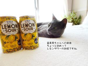 富美男ちゃんへの背徳… ちょっと斜めって レモンサワーの斜塔ですね。