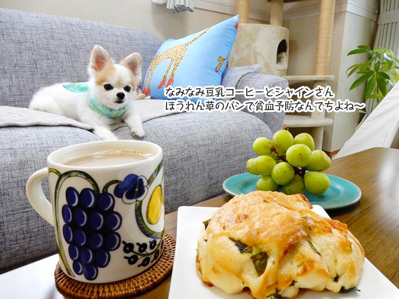 なみなみ豆乳コーヒーとシャインさん ほうれん草のパンで貧血予防なんでちよね~