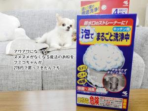 アワアワになって ヌメヌメがなくなる魔法のお粉を マミコちゃんが 278円で買ってきたんでち