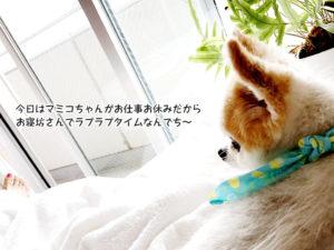 今日はマミコちゃんがお仕事お休みだから お寝坊さんでラブラブタイムなんでち~