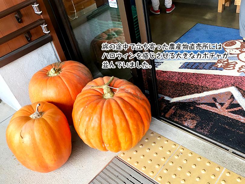 旅の途中で立ち寄った農産物直売所には ハロウィンを感じさせる大きなカボチャが 並んでいました。