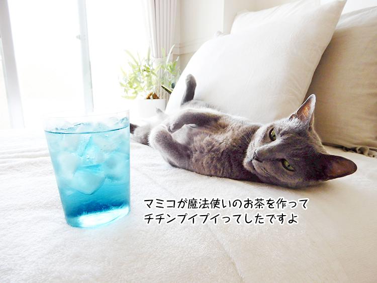 マミコが魔法使いのお茶を作って チチンプイプイってしたですよ