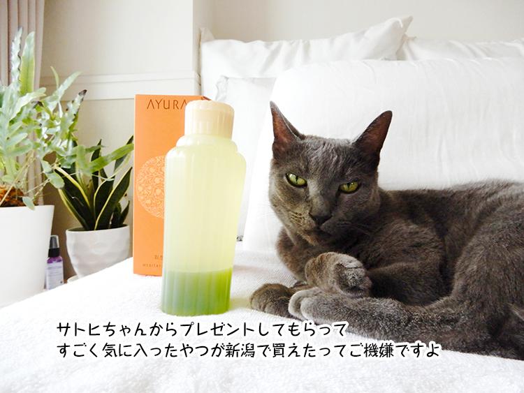 サトヒちゃんからプレゼントしてもらって すごく気に入ったやつが新潟で買えたってご機嫌ですよ