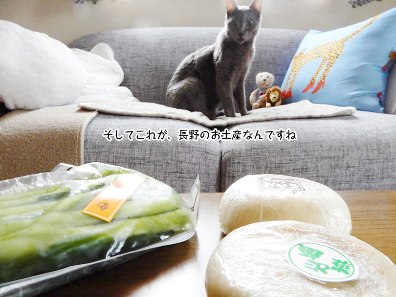 そしてこれが、長野のお土産なんですね