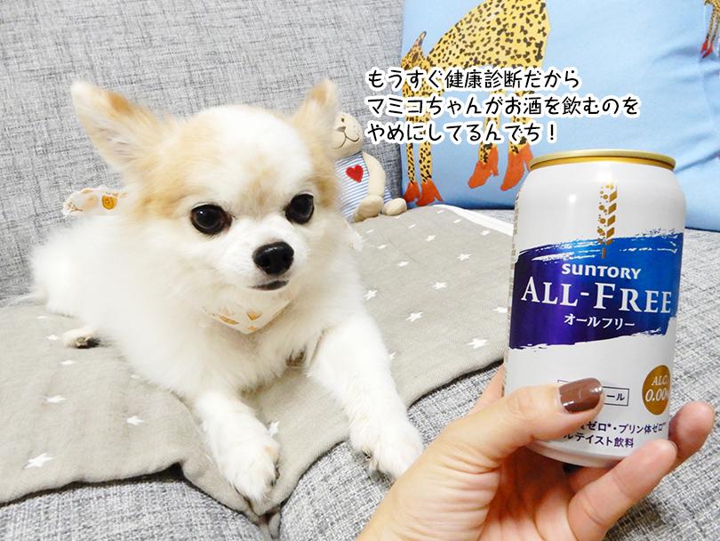 もうすぐ健康診断だから マミコちゃんがお酒を飲むのを やめにしてるんでち!