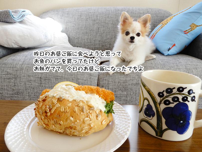 昨日のお昼ご飯に食べようと思って お魚のパンを買ってたけど お熱がでて、今日のお昼ご飯になったでちよ