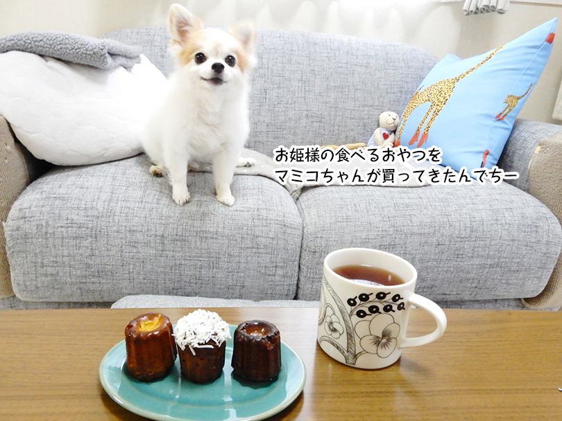 お姫様の食べるおやつを マミコちゃんが買ってきたんでちー