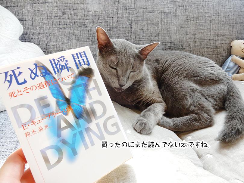 買ったのにまだ読んでない本ですね。