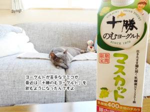 ヨーグルトが苦手なマミコが 最近は「十勝のむヨーグルト」を 飲むようになったんですよ