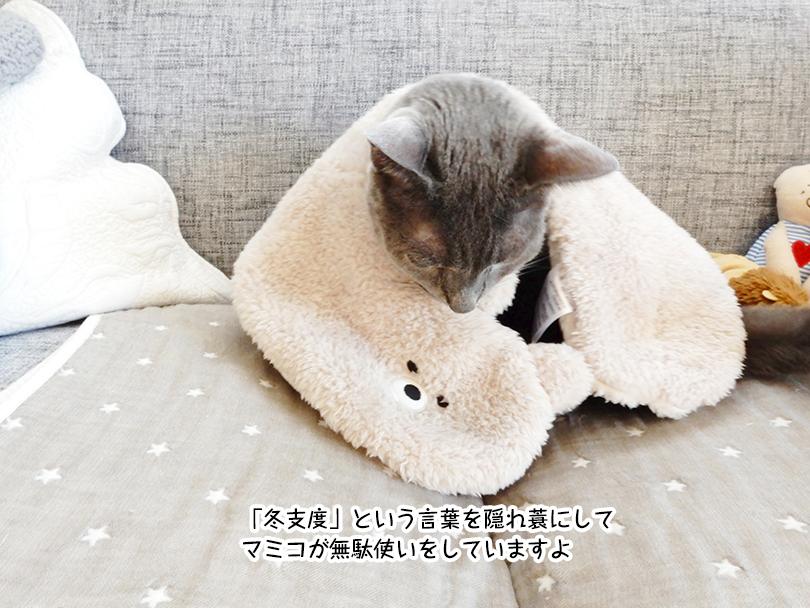 「冬支度」という言葉を隠れ蓑にして マミコが無駄使いをしていますよ