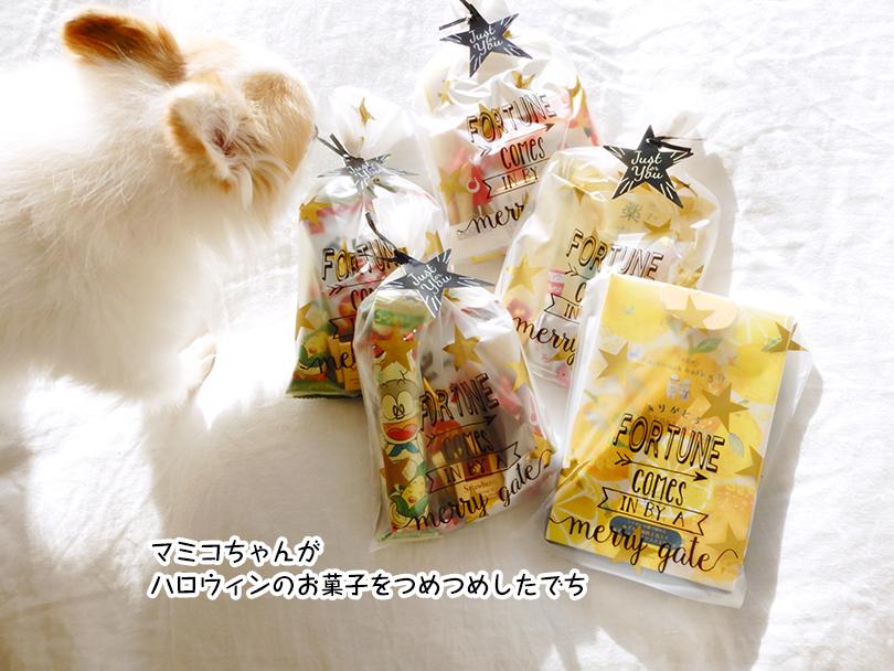 マミコちゃんが ハロウィンのお菓子をつめつめしたでち