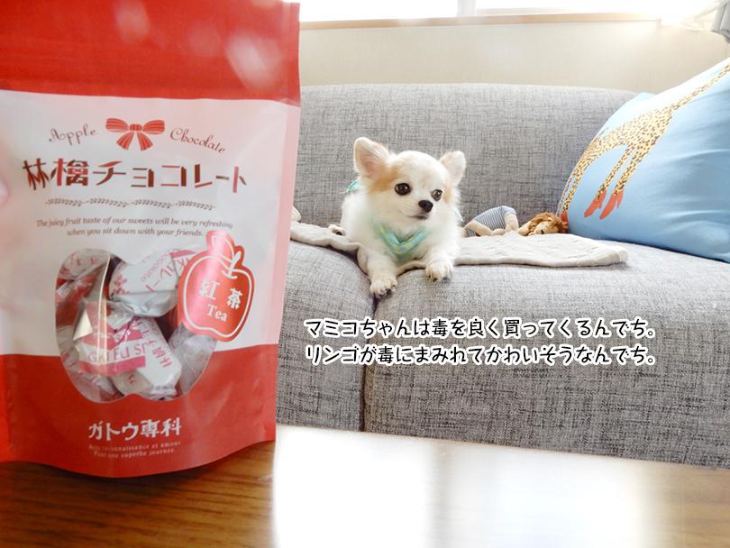 マミコちゃんは毒を良く買ってくるんでち。 リンゴが毒にまみれてかわいそうなんでち。