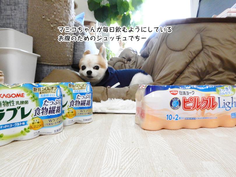 マミコちゃんが毎日飲むようにしている お腹のためのジュッチュでちー