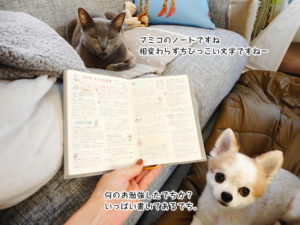 マミコのノートですね。相変わらずじびっこい文字ですねー