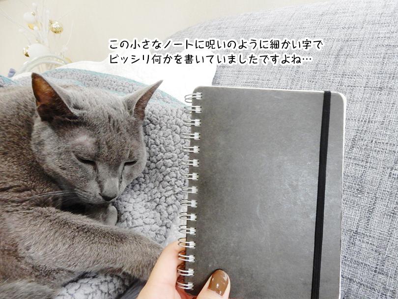 この小さなノートに呪いのように細かい字でビッシリ何かを書いていましたですよね…