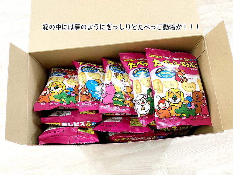 箱の中には夢のようにぎっしりとたべっこ動物が!!!