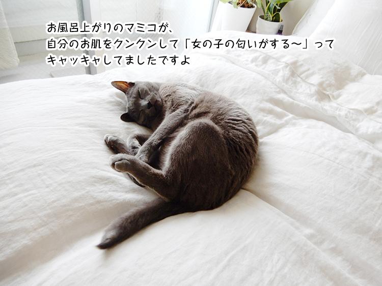 眠る前の優しい言葉 ~頭に付けるだけで勇気が出る魔法のひとこと~