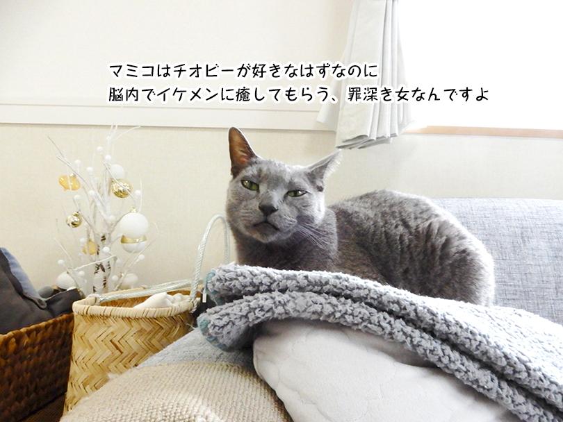マミコはチオビーが好きなはずなのに 脳内でイケメンに癒してもらう、罪深き女なんですよ